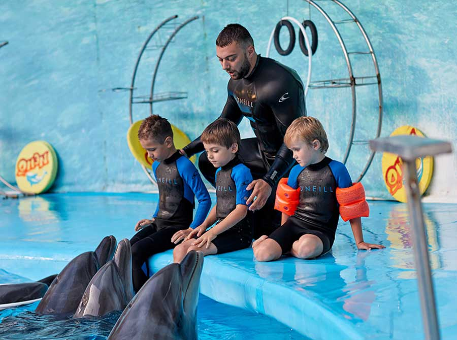 Dolphin sessions for children with special needs