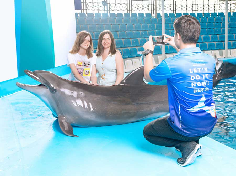 Photos with Dolphins